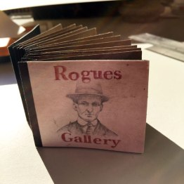 Rogues_book_final_web